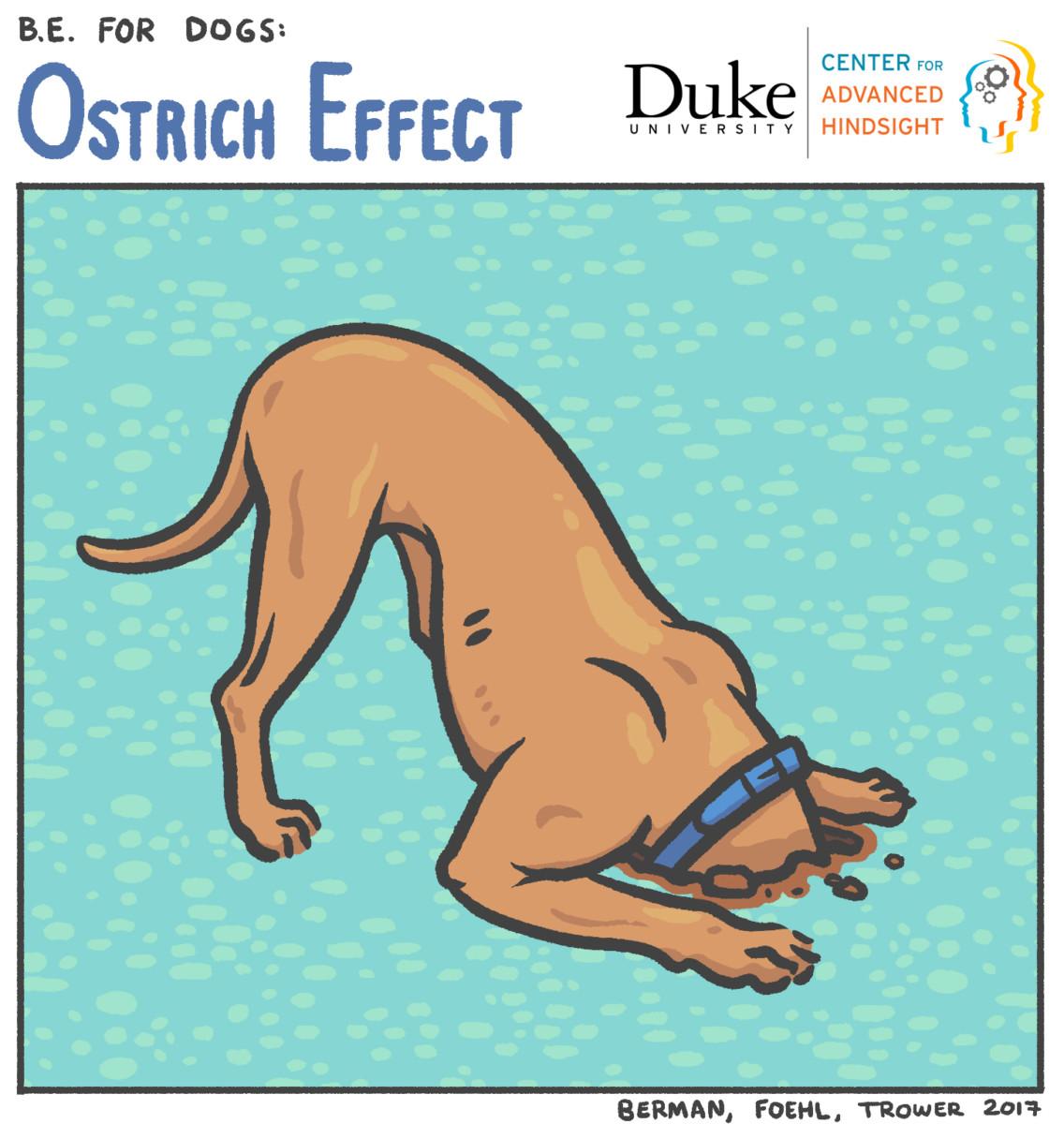 The ostrich effect | Behavioral Economics